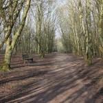 Field Trip Friday: Winter Nature Preserve Edition!