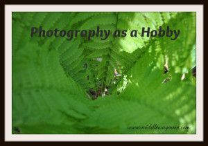 Photography as a Hobby