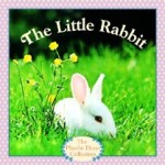 The Little Rabbit BFIAR Islamic Adaptation