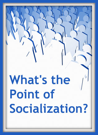 What's the Point of Socialization?