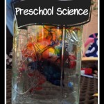 Preschool Science 2013