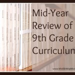 9th Grade Curriculum – Mid-Year Curriculum Review