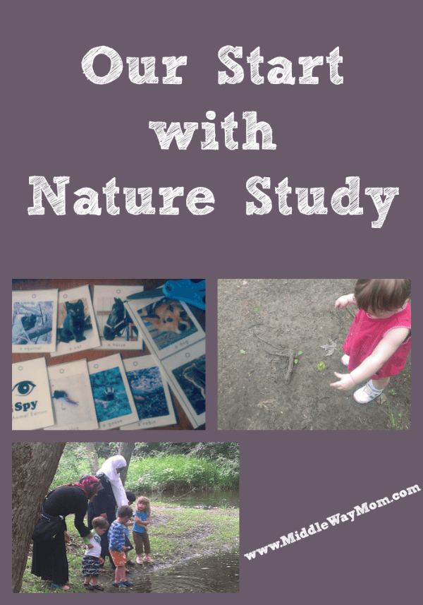 Our Start with Nature Study - www.MiddleWayMom.com