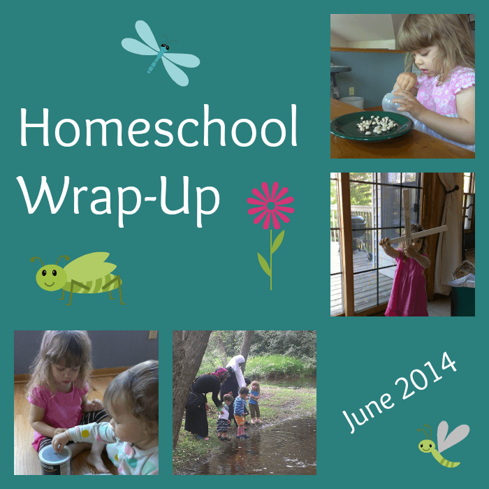 Homeschool Wrap-Up June - www.MiddleWayMom.com