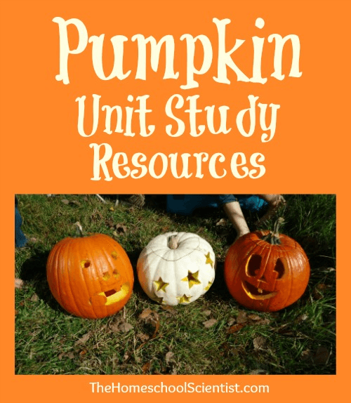 How are you teaching your kids about the changing seasons? I've gathered dozens of resources in this Fall Activites/Fall Nature Study round up! Get outside and learn with nature study, art, science, and much more! - www.MiddleWayMom.com
