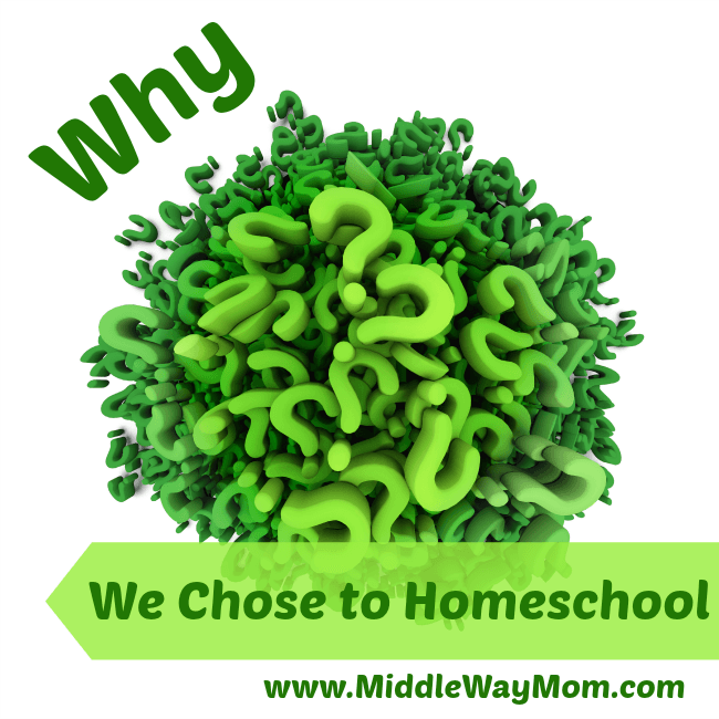 We didn't always homeschool, so why did we start? Read here why we made the switch! - www.MiddleWayMom.com