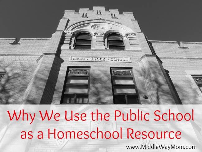 Homeschooling high school requires a good mix of resources. I explain why we've chosen to use the public school as one of those resources.