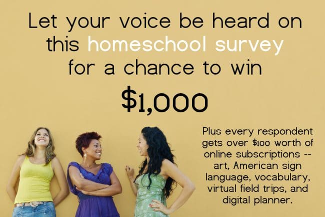 Smashing Stereotypes Homeschool Survey - Let your voice be heard!