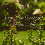 Setup Your Backyard for Nature Study