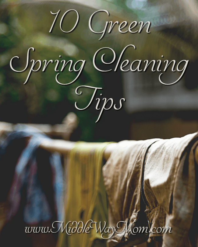 It's time for spring cleaning, but lose the chemicals! Green spring cleaning tips to get you started for a healthy summer!