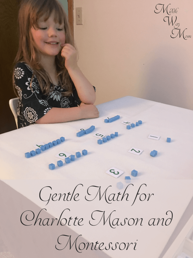 What a gentle way to introduce math! Perfect for Charlotte Mason and Montessori approaches. A review of Shiller Math.