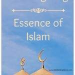 Thanksgiving - Essence of Islam - www.MiddleWayMom.com