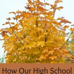 High school are very important years. How have our goals changed over the last couple years?