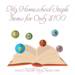 My Homeschool Staple Items for Only $100 - Not your crayons and pencils! Make your homeschool day more efficient!